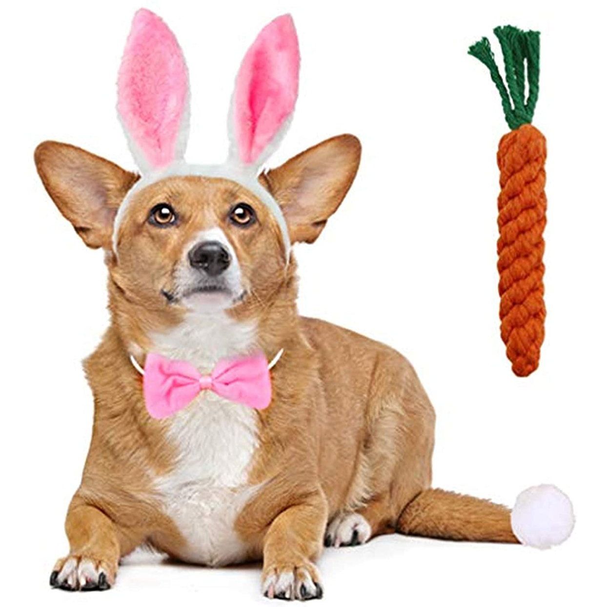 dog bunny ears carrot toy