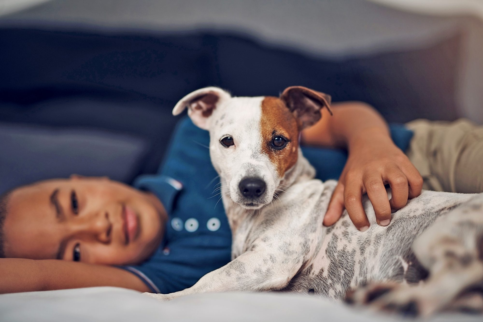 boy and dog lay down together
