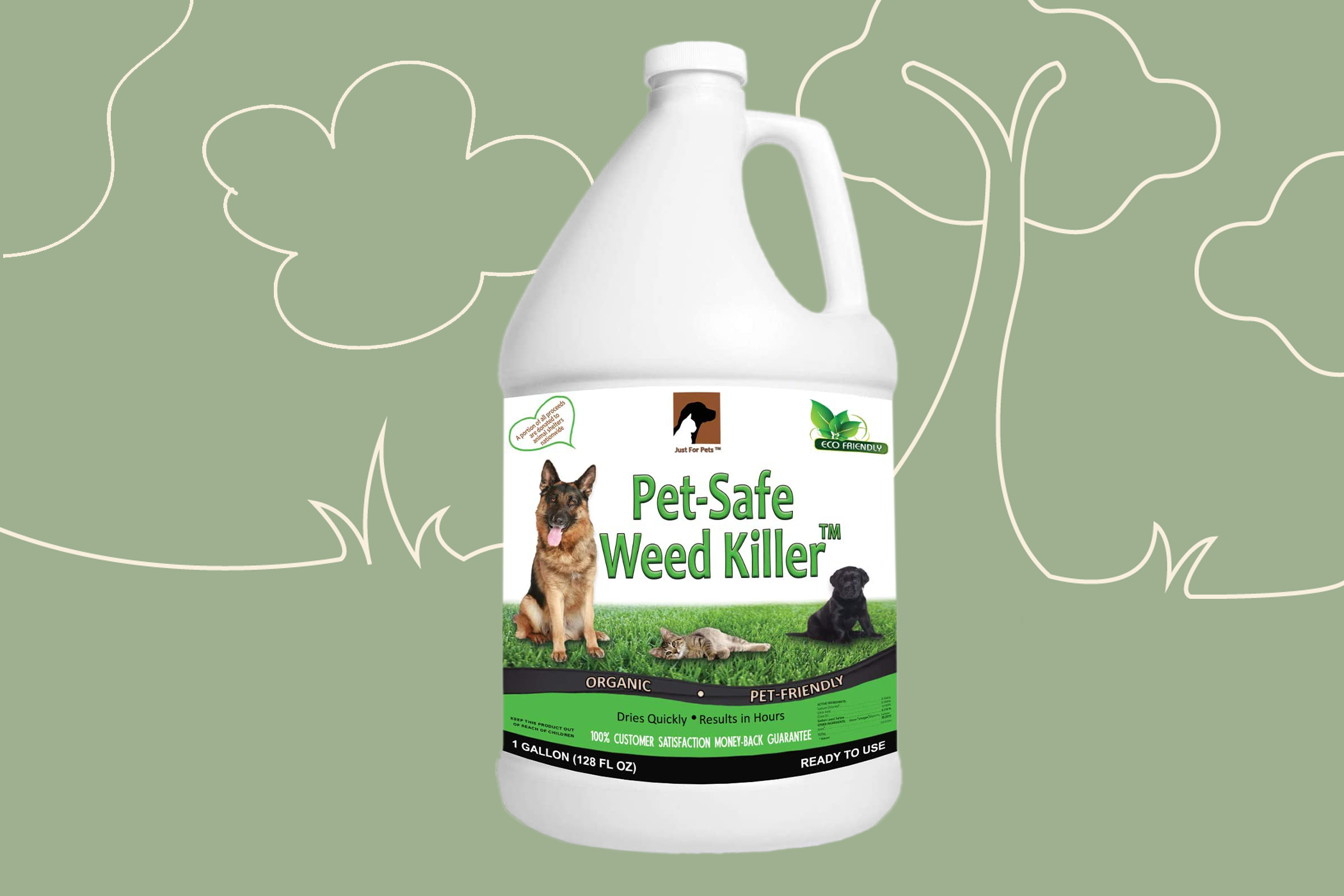 pet-safe weed killer