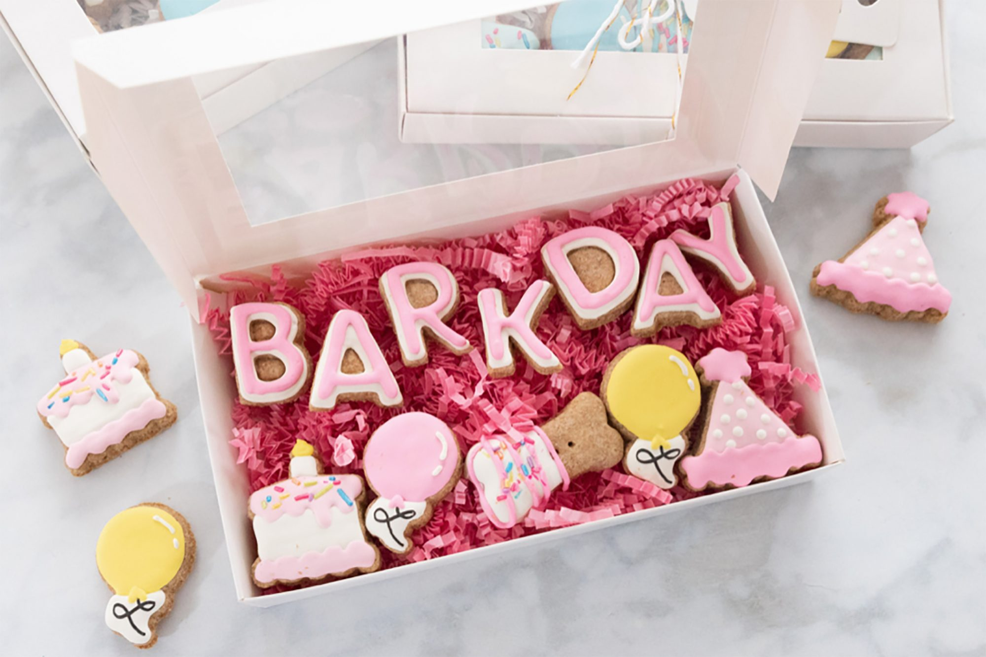 Picture of Barkday treats box with cake and balloon and birthday hat dog treats