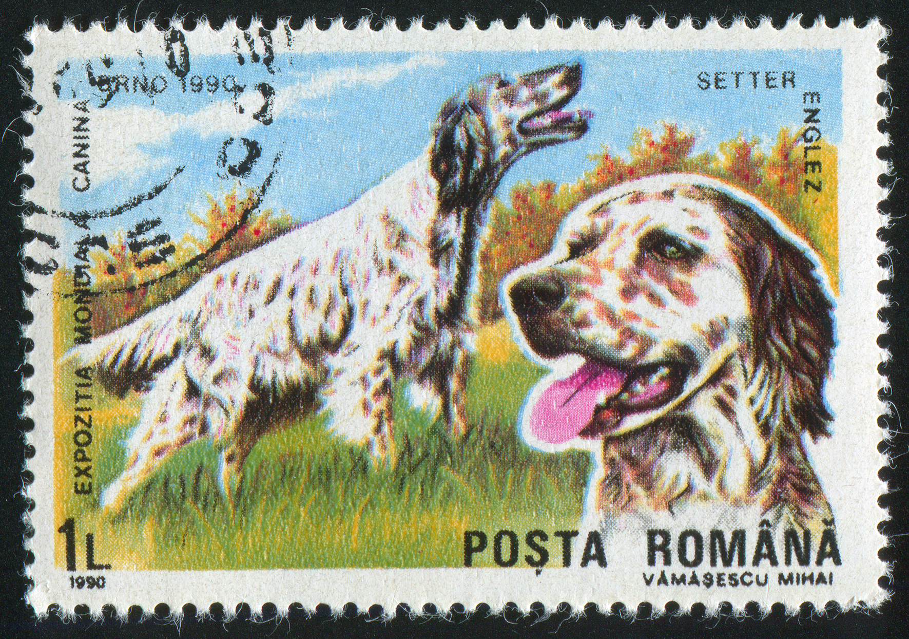 90s English Setter-featuring postage stamp