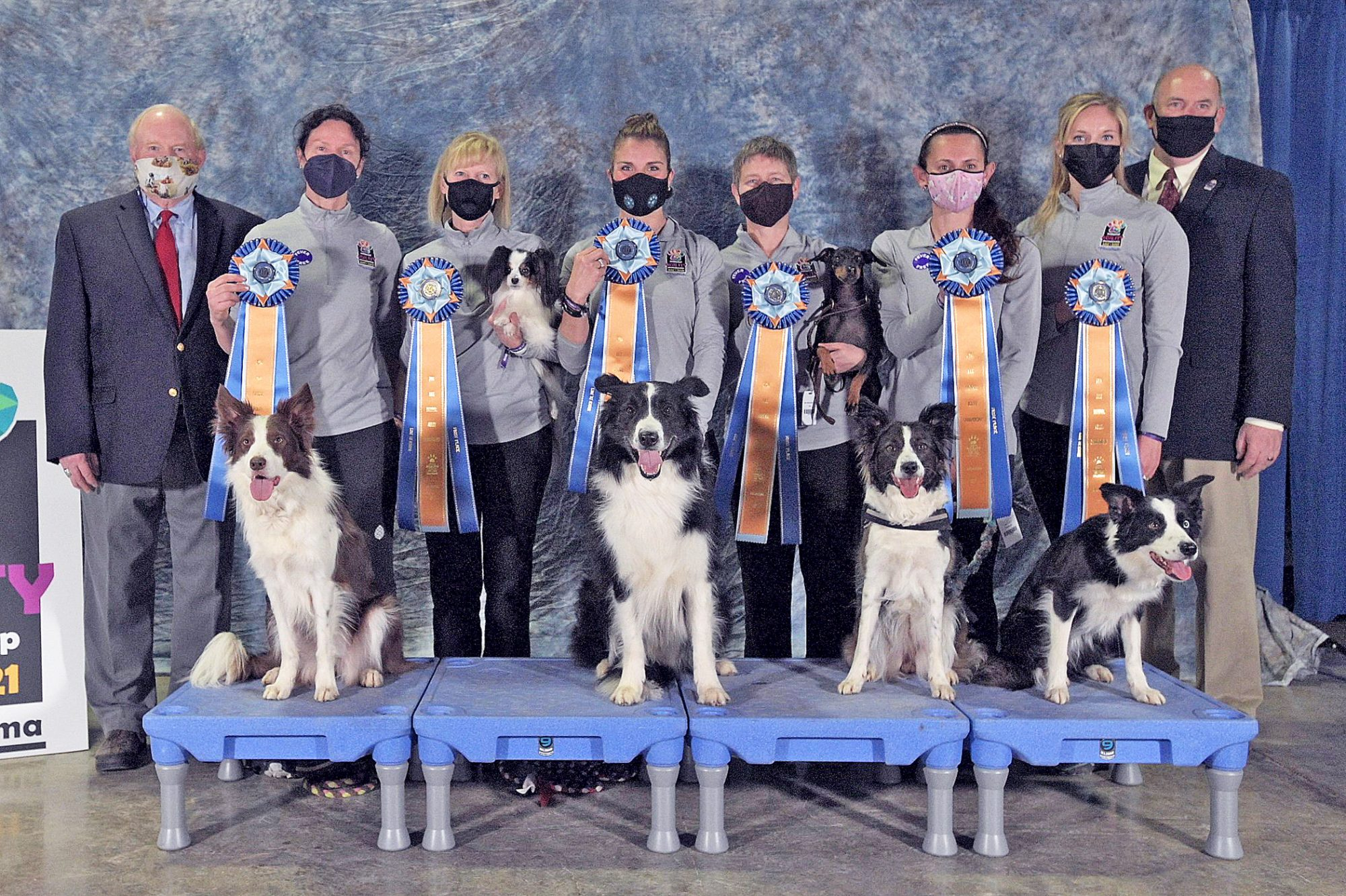 Winners of the AKC 2021 National Agility Championship