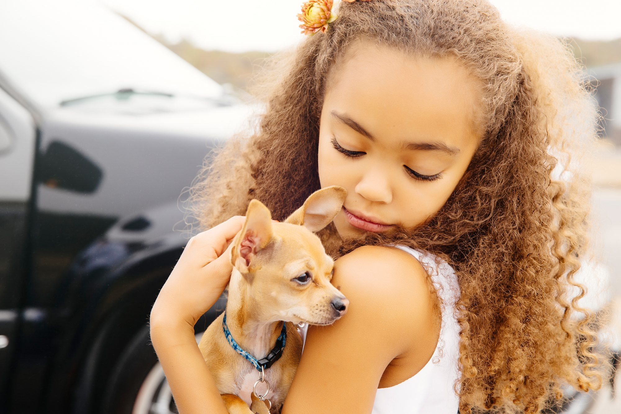 young girl holding chihuahua