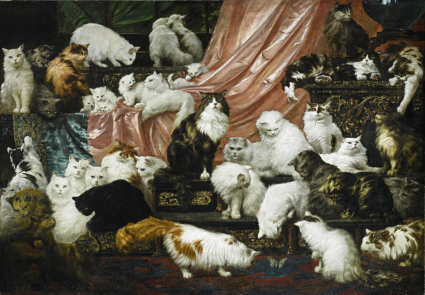 Painting of many persian cats of white, black and tabby variety