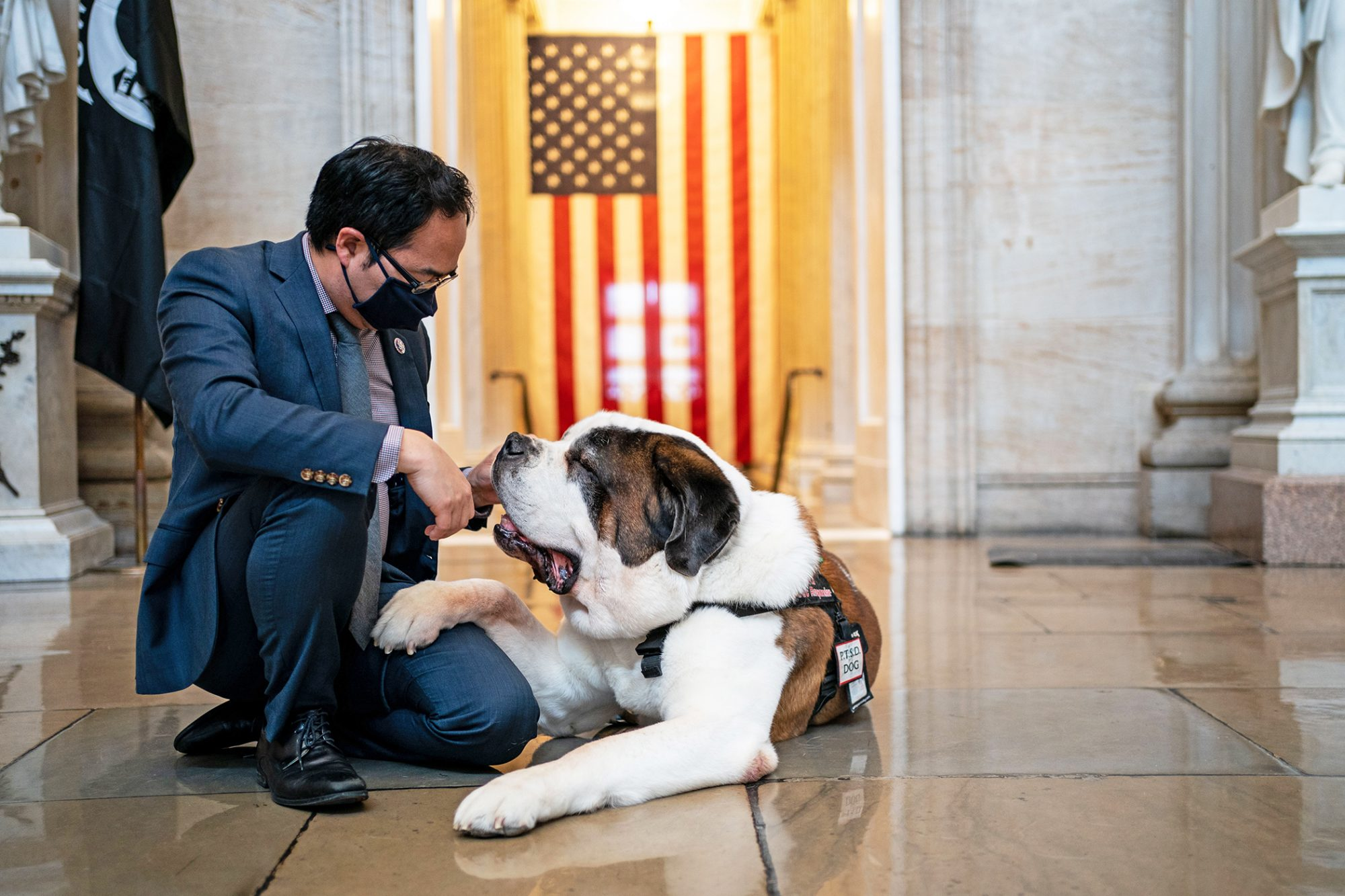 Gentleman petting Clarence the comfort dog at the U.S. Capitol
