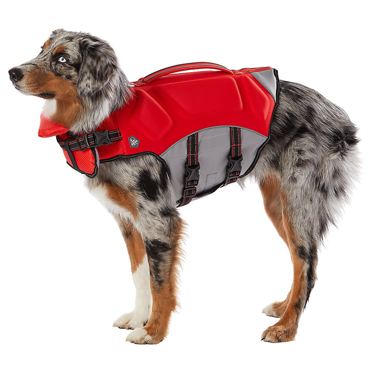 Arcadia trail dog life jacket