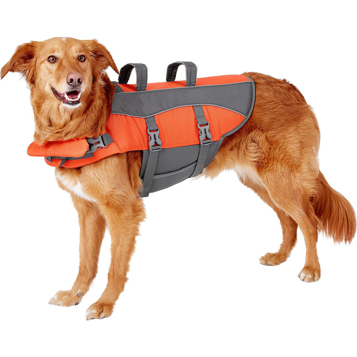Frisco ripstop dog life jacket