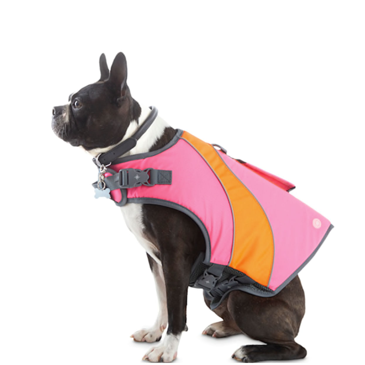 YOULY dog flotation vest