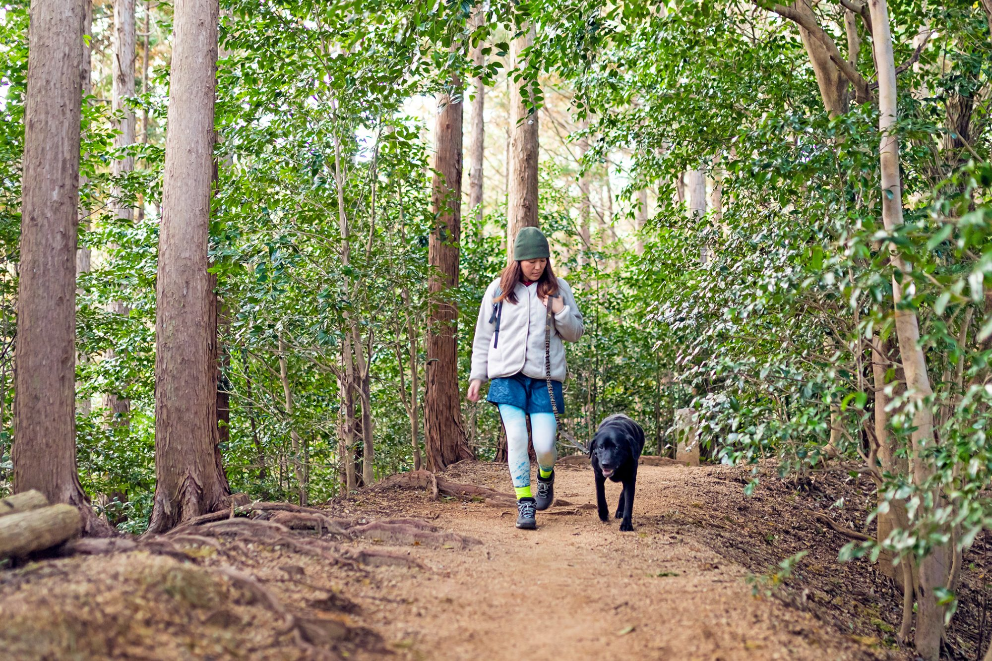 Woman hiking with her black lab on a mountain forest path