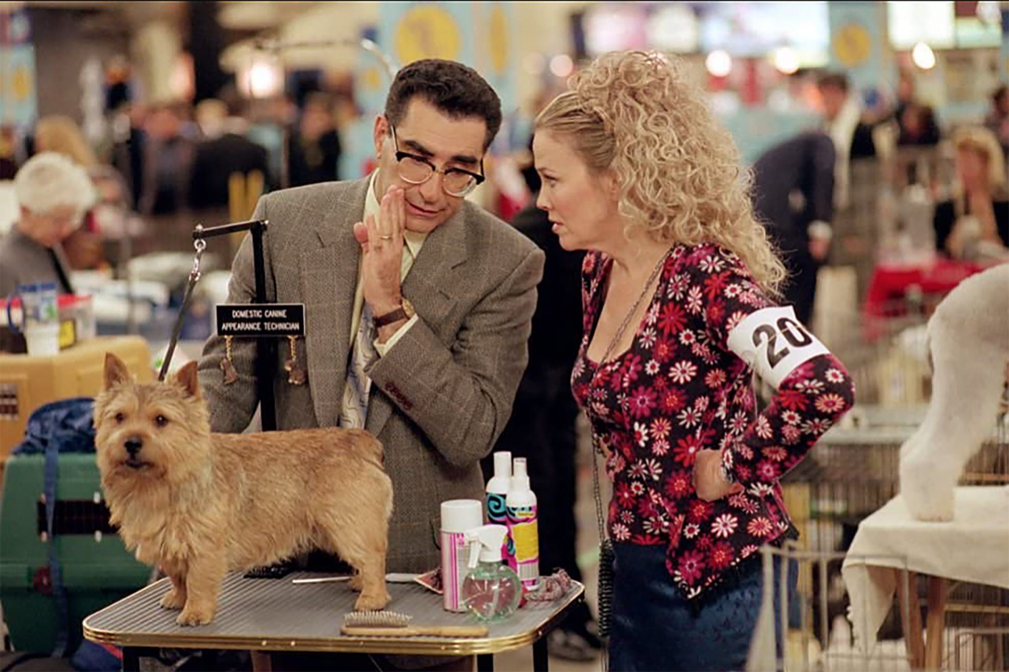 Best in Show movie's Norwich Terrier with Eugene Levy and Catherine O'Hara