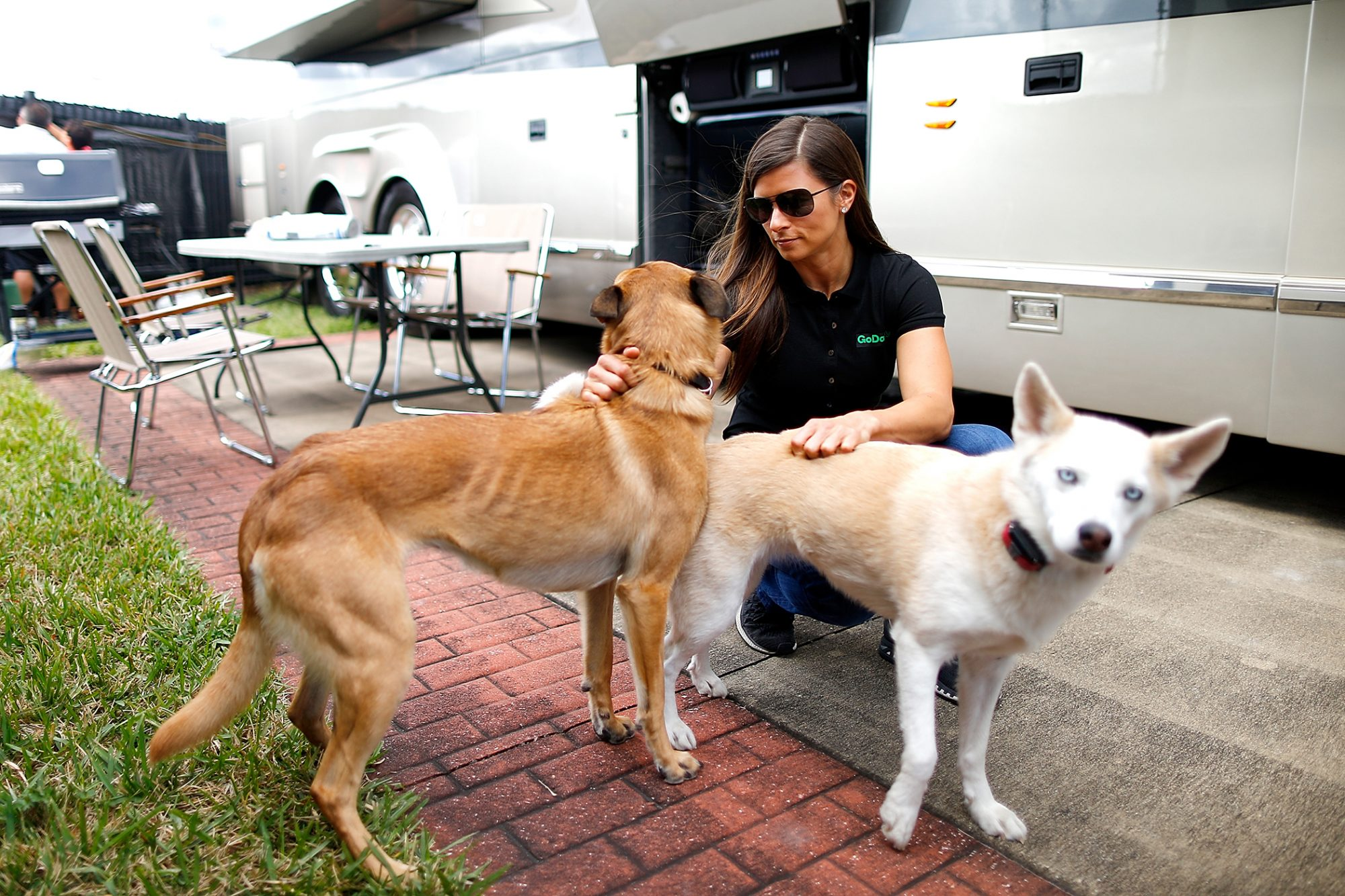 Danica Patrick with her dogs