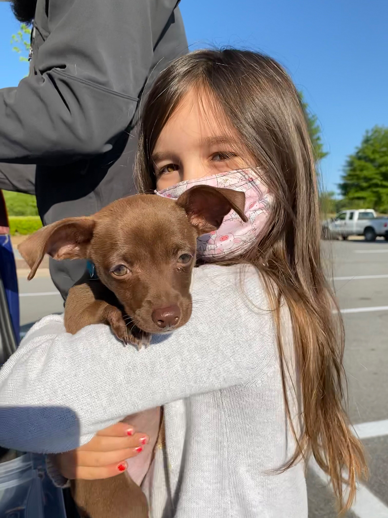 girl holding brown puppy