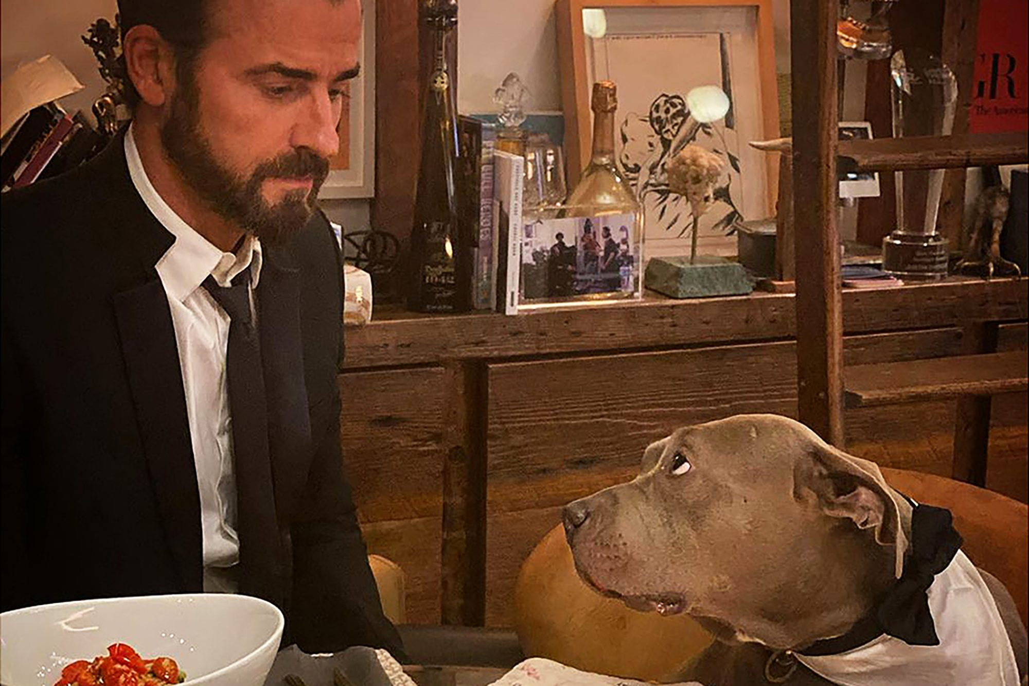 Justin Theroux with his dog at the dinner table