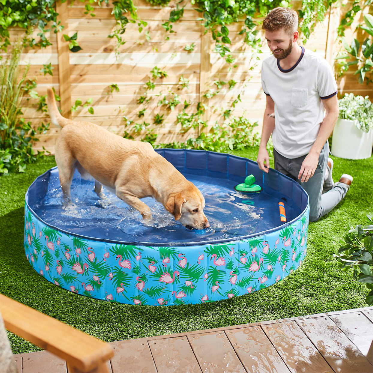Frisco outdoor dog swimming pool