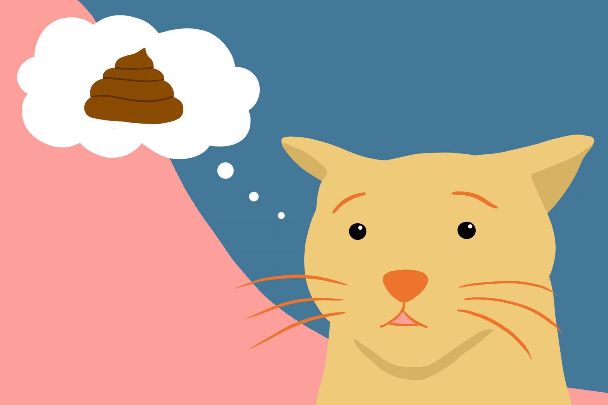 illustration of a cat thinking about a poo emoji