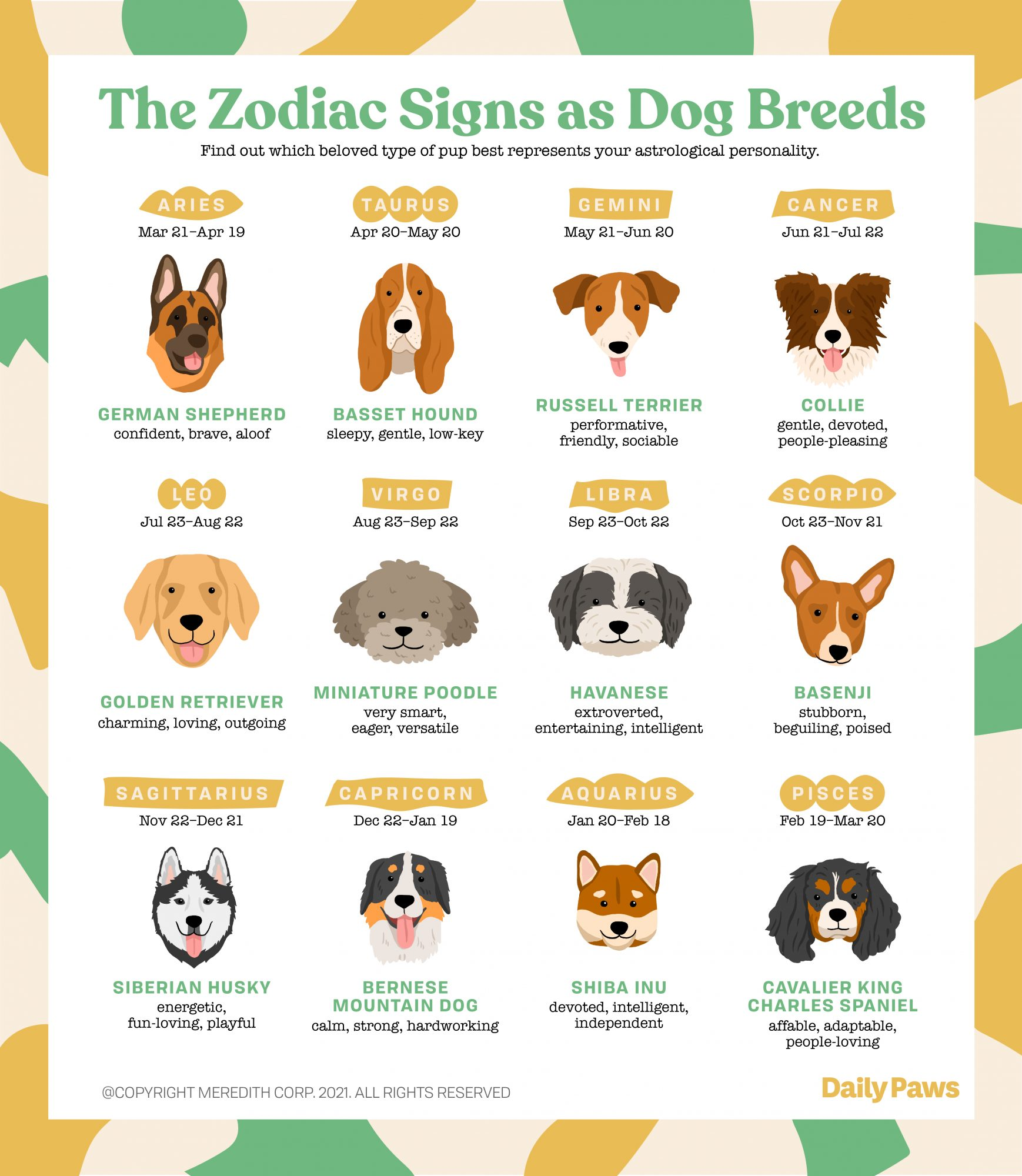 infographic showing which dog breed matches which zodiac sign