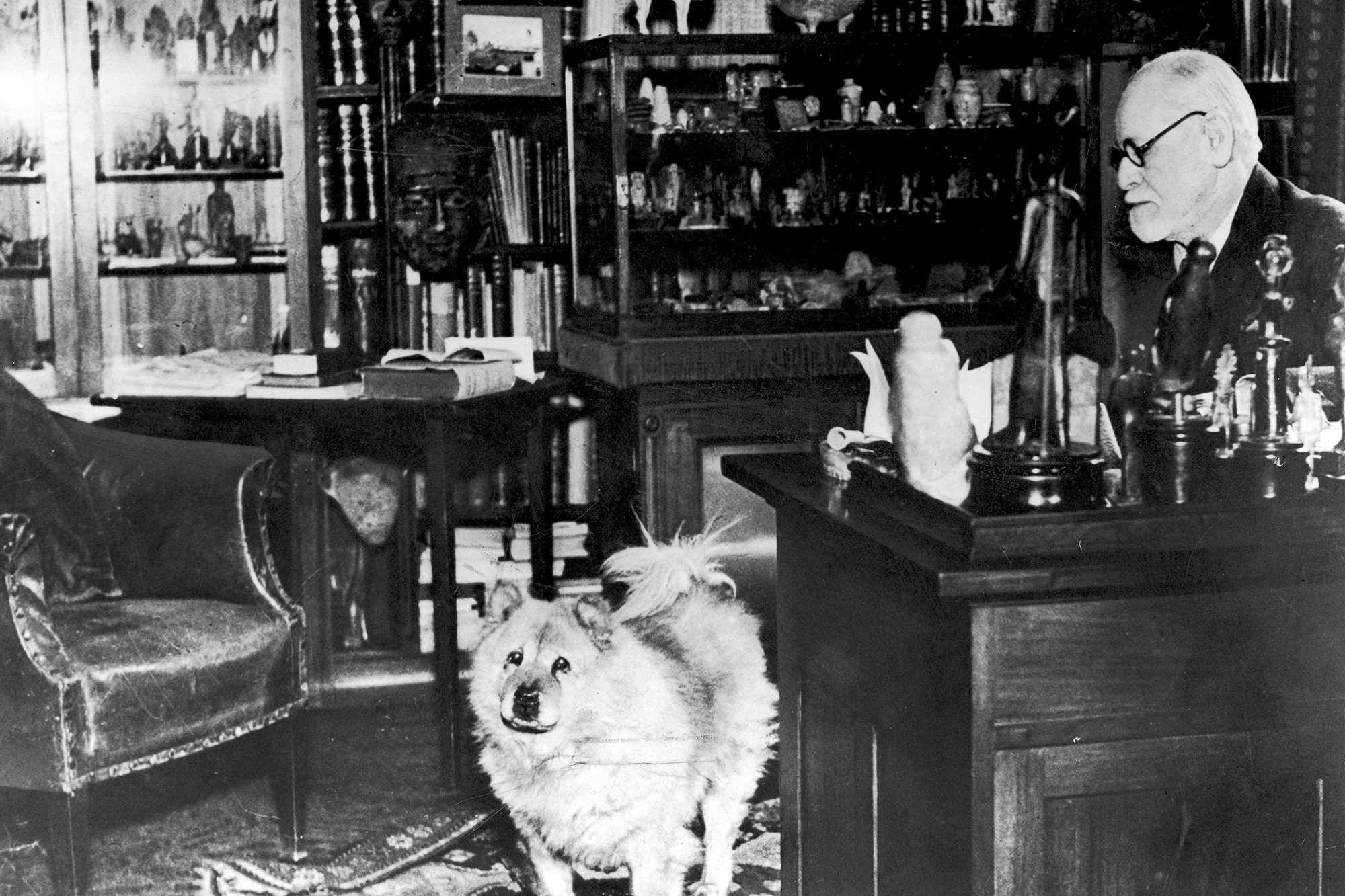 Sigmund Freud in his office with his Chow Chow, Jofi, in 1937.