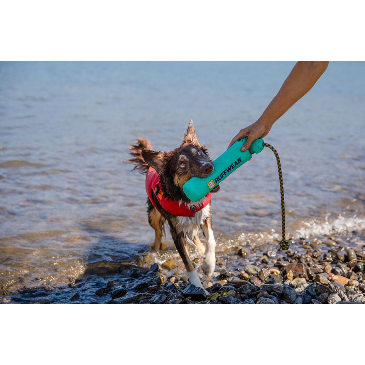 lunker floating throw toy