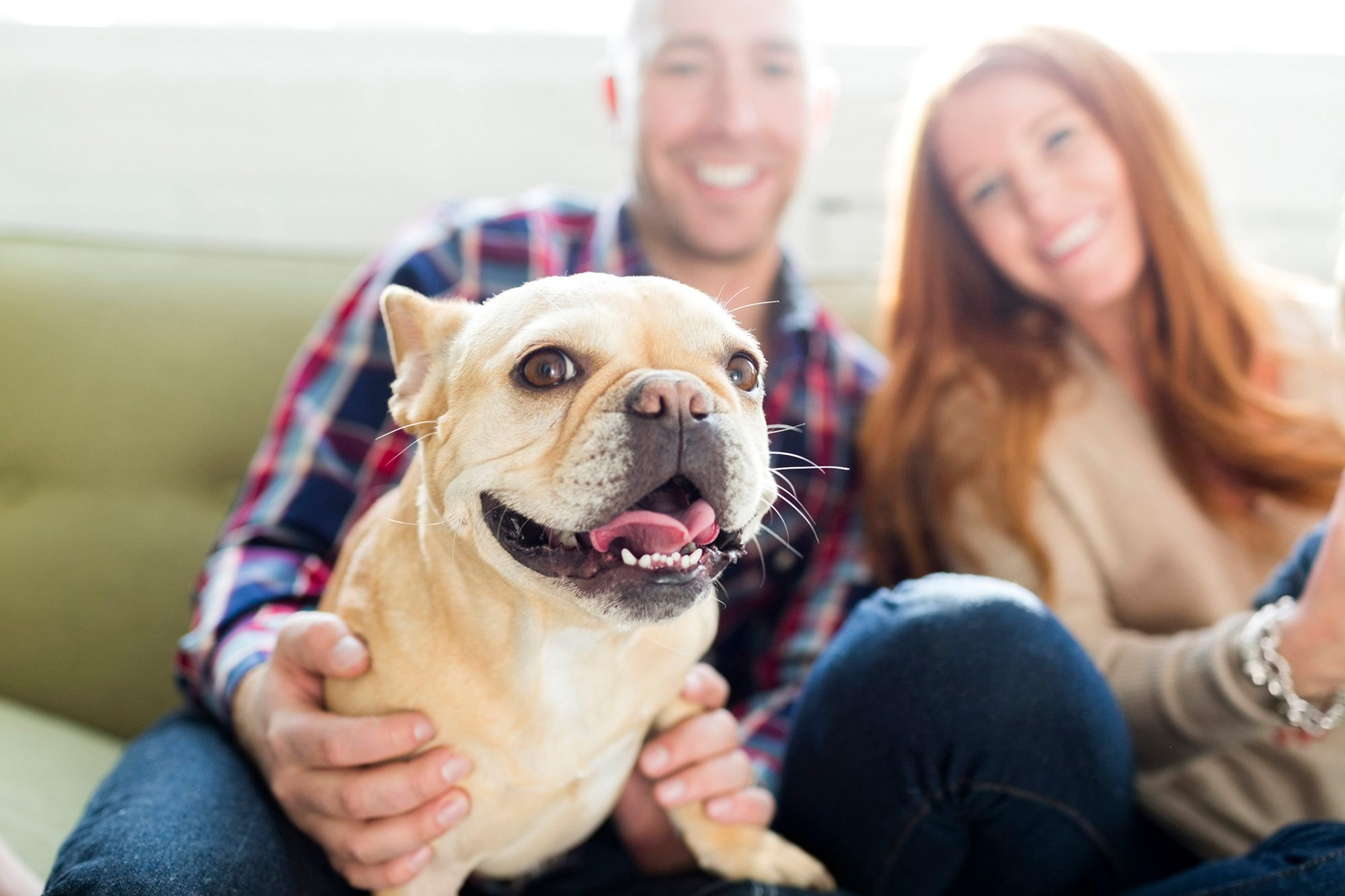 Couple with dog sitting on couch