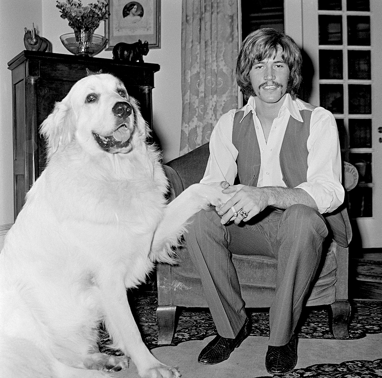 great pyrenees with barry gibb