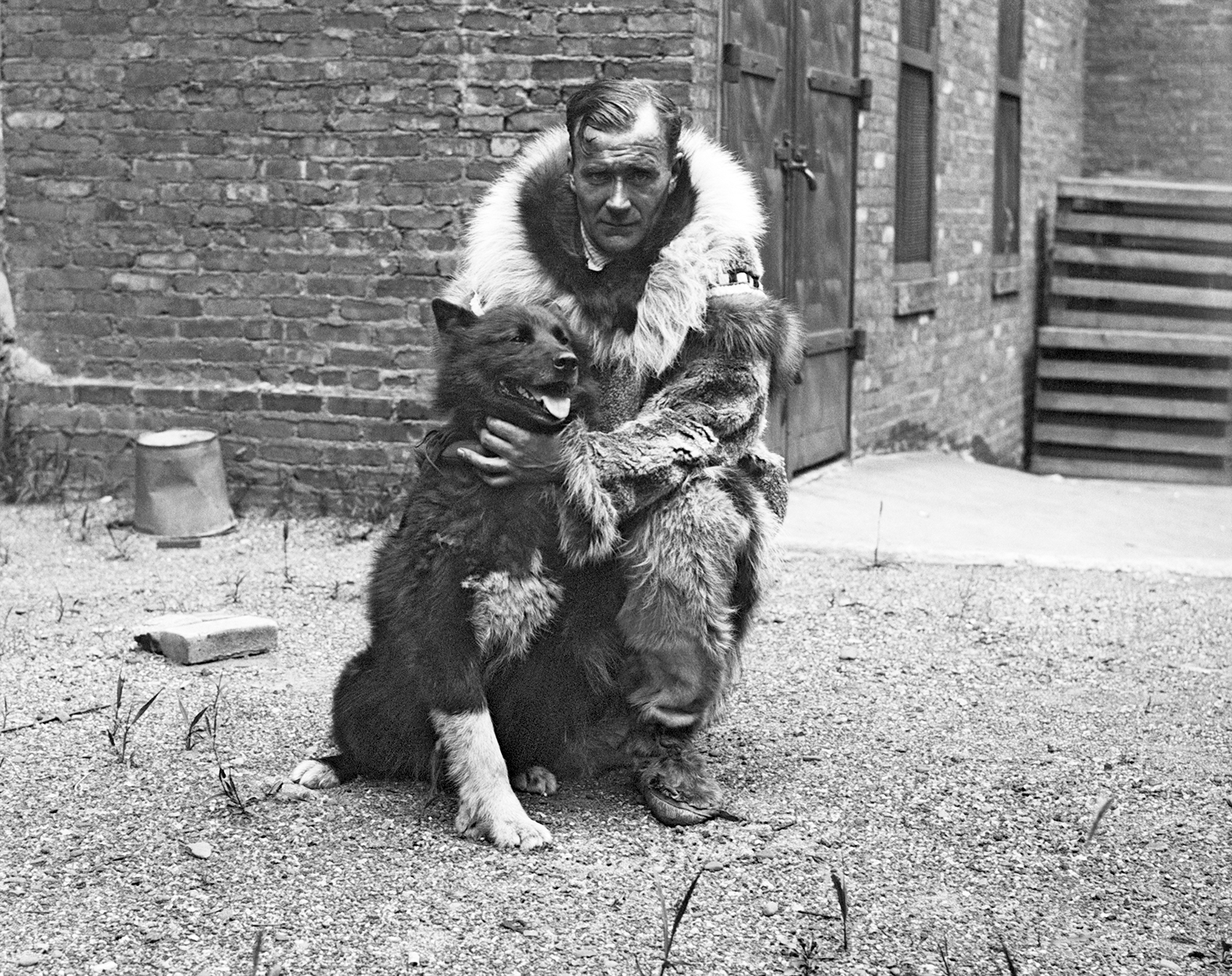 vintage black and white photo of siberian husky Balto with Sledder in fur coat