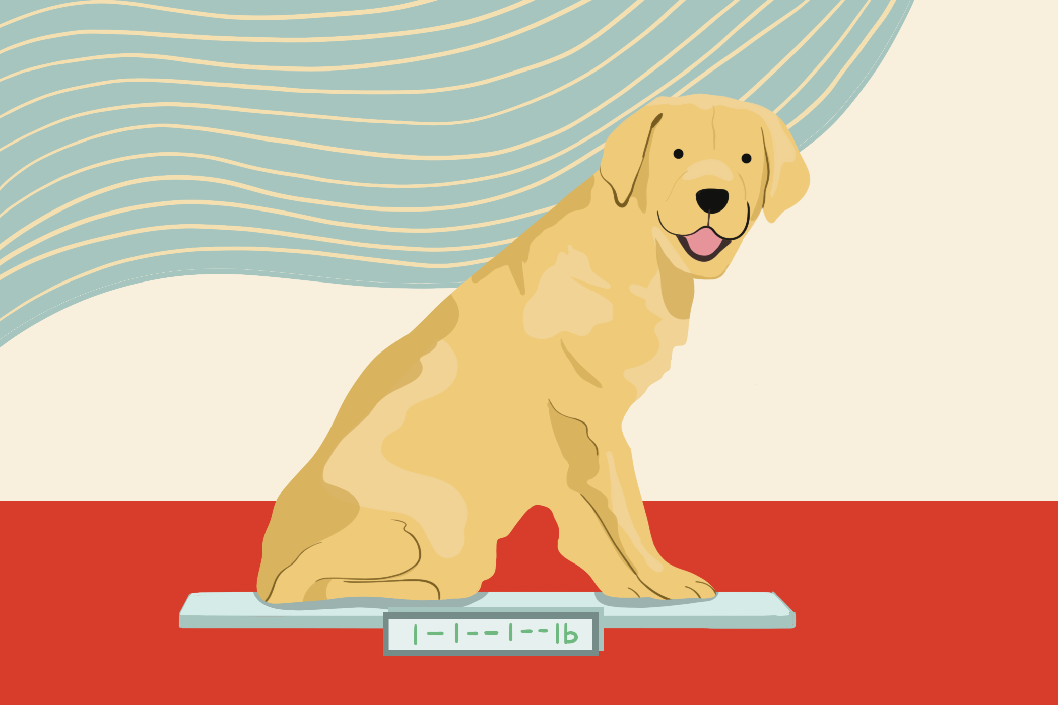 illustration of a dog sitting on a scale