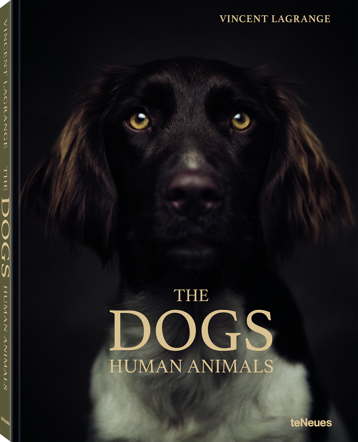 the dogs human animals book cover