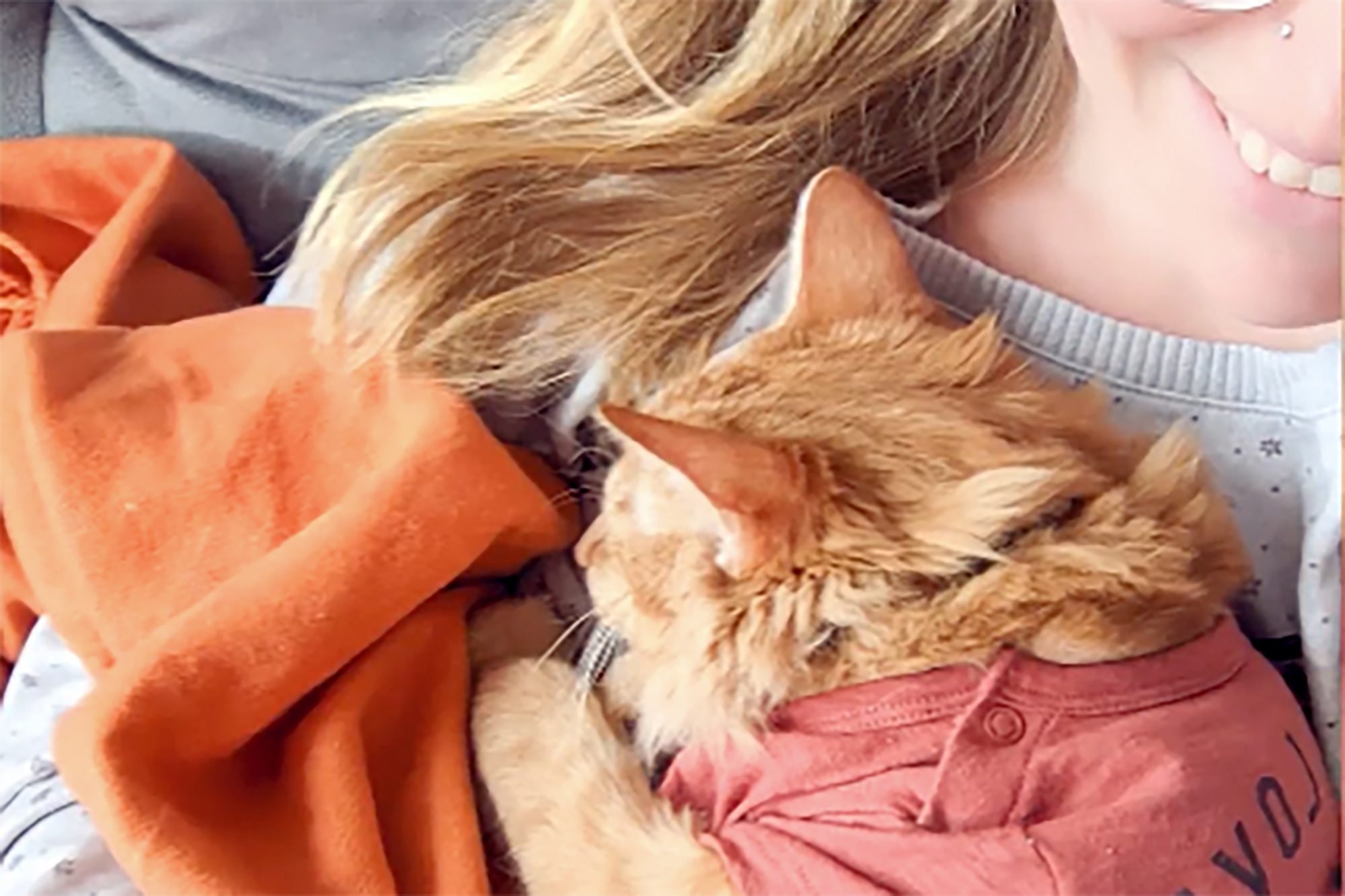 cat laying on owner's chest
