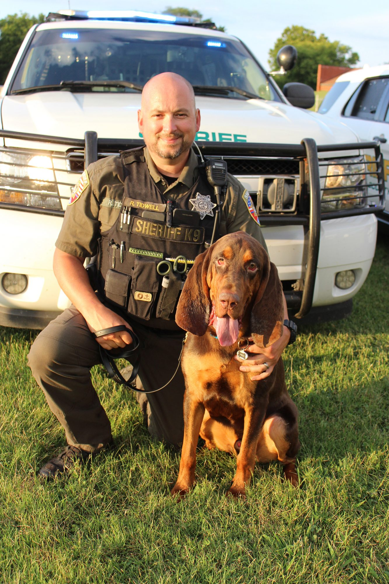 bloodhound that rescued dog