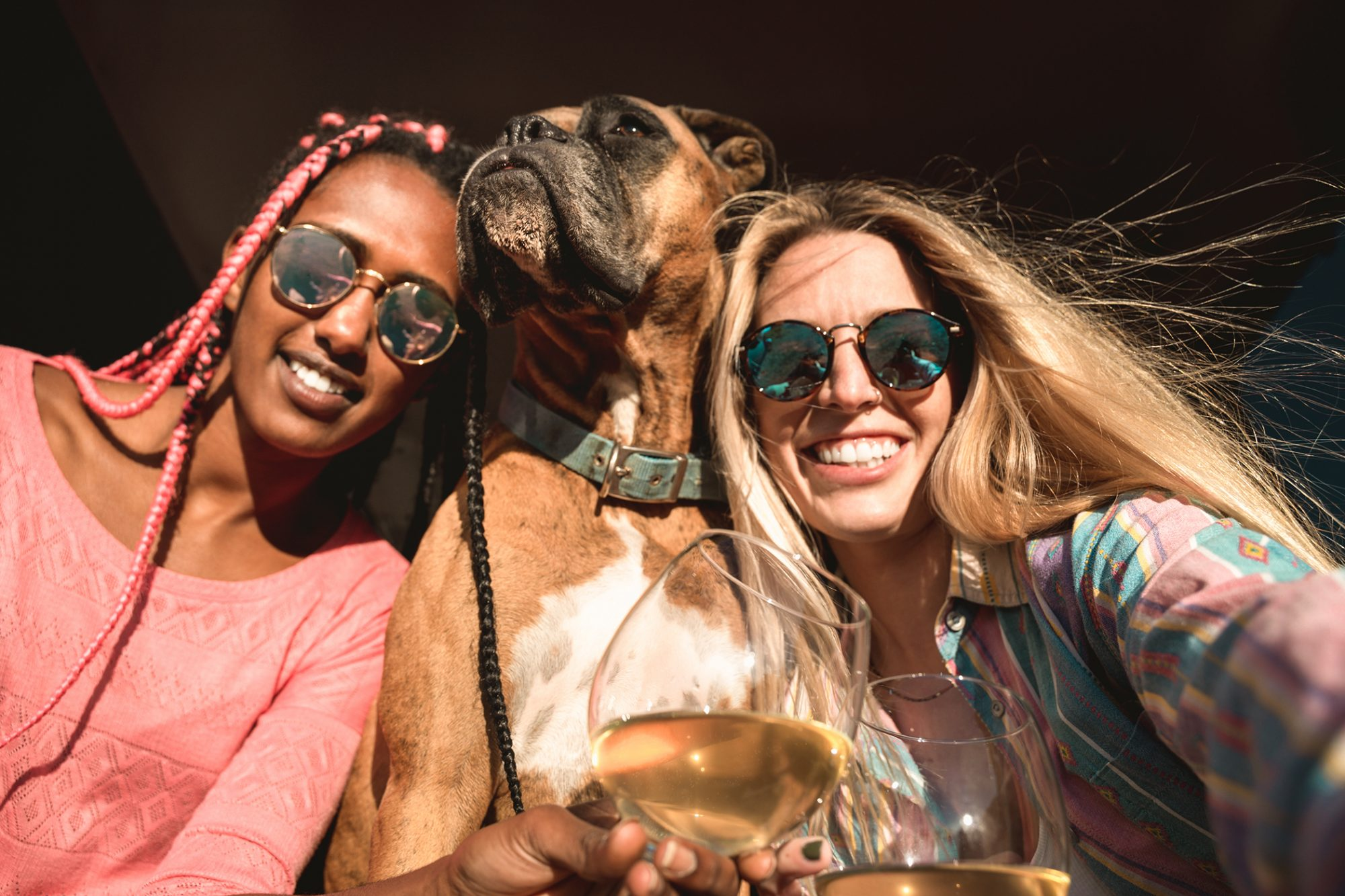 two women with dog at winery wine tasting