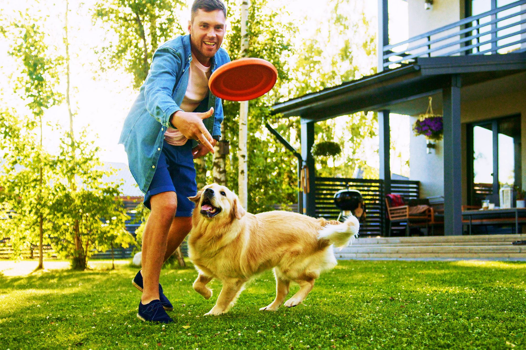 man throwing frisbee for dog