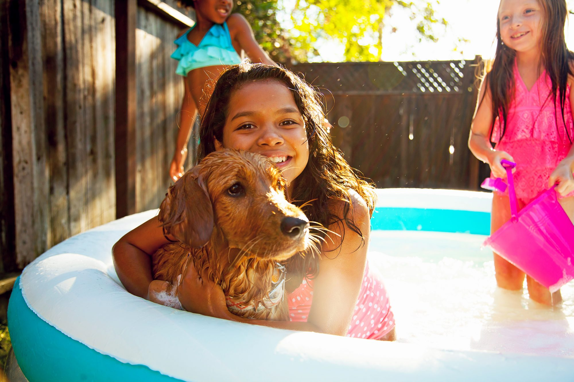 dog in wading pool with kids