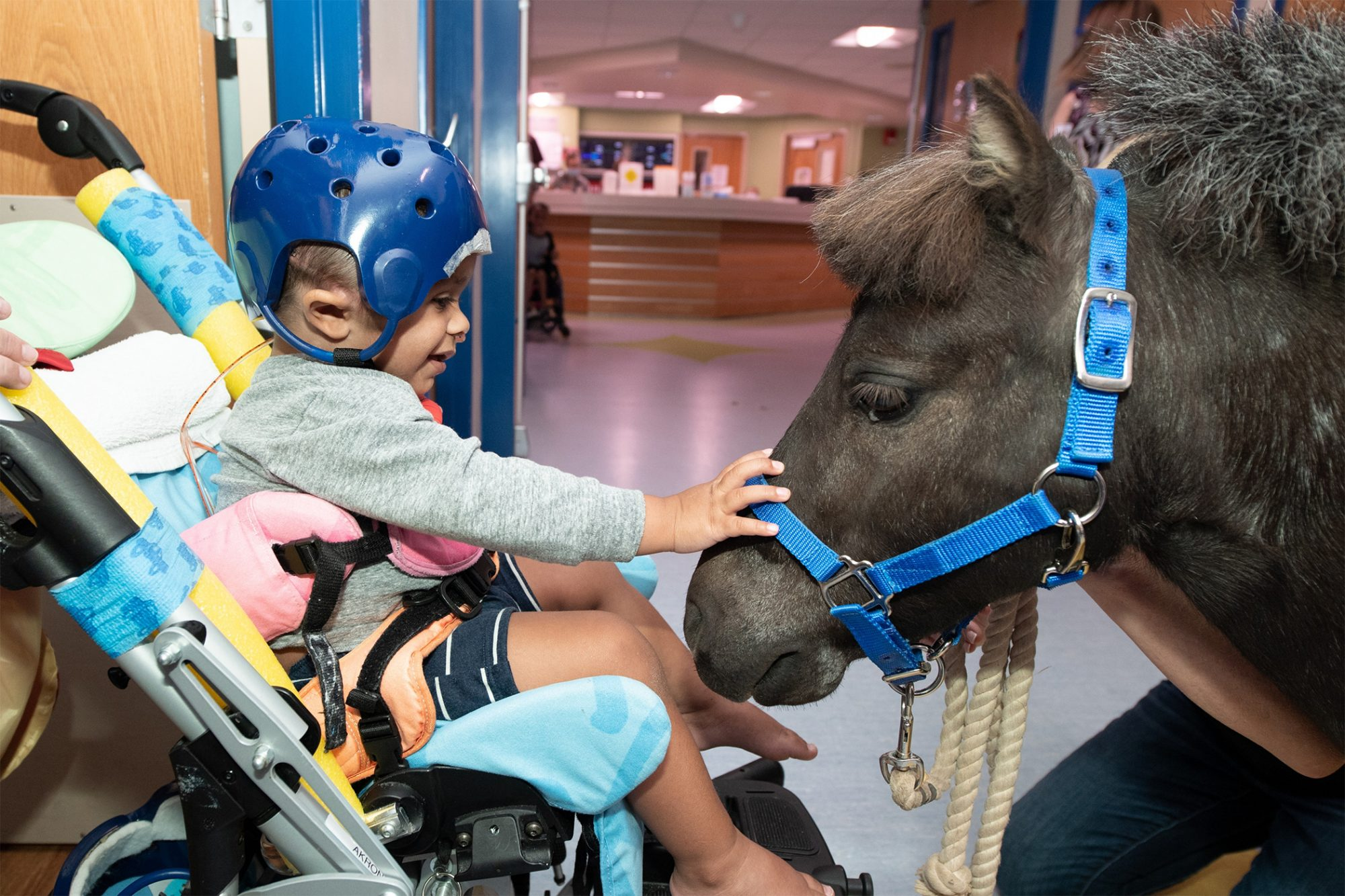 young child in stroller wearing helmet petting a therapy pony