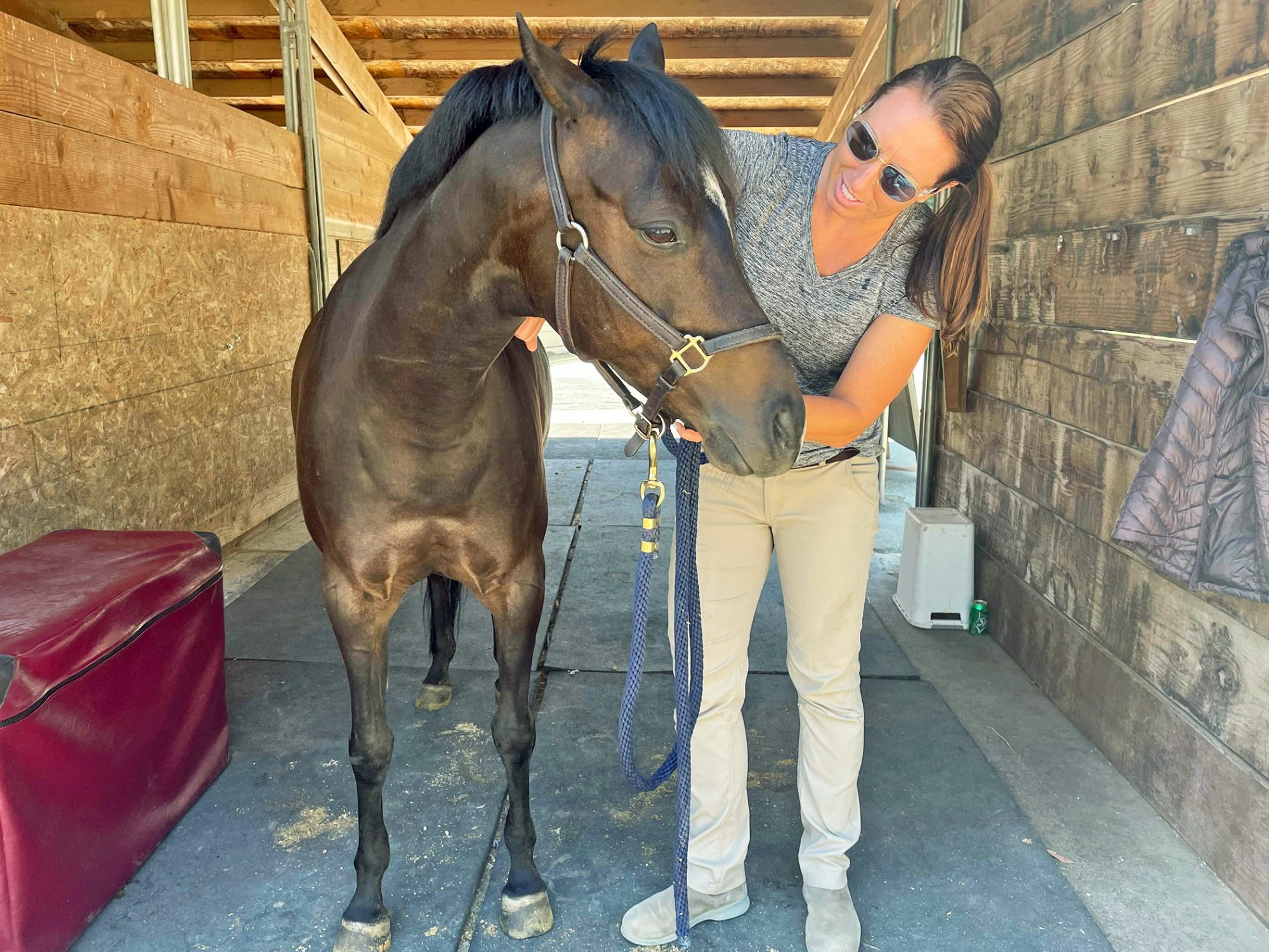 Dr. Cara Wright practicing holistic vet care with horse in a stable