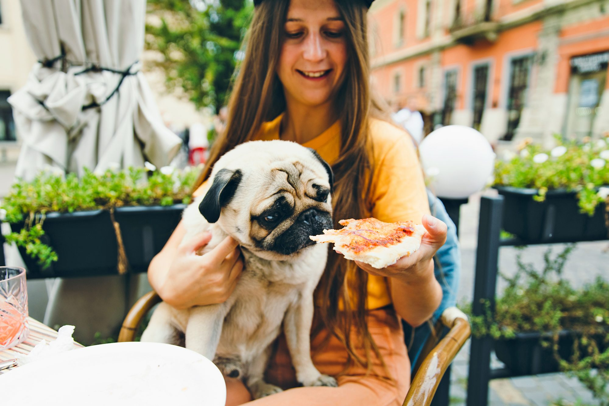 Woman and a dog eating cheese pizza at summer terrace of a restaurant