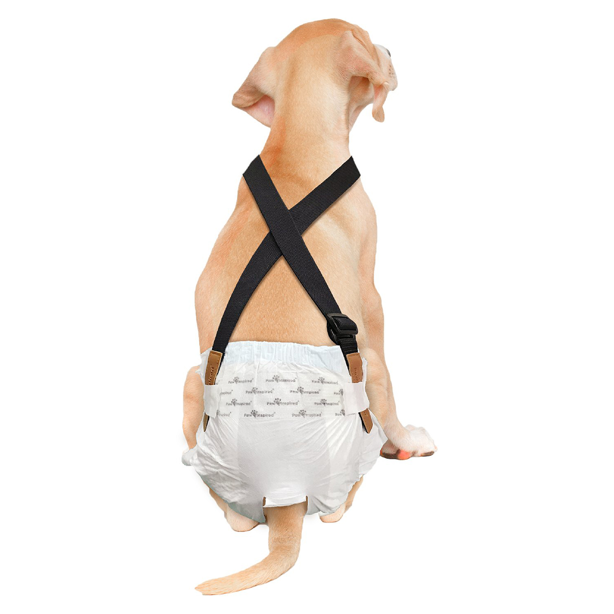Paw Inspired Dog Diaper Suspenders