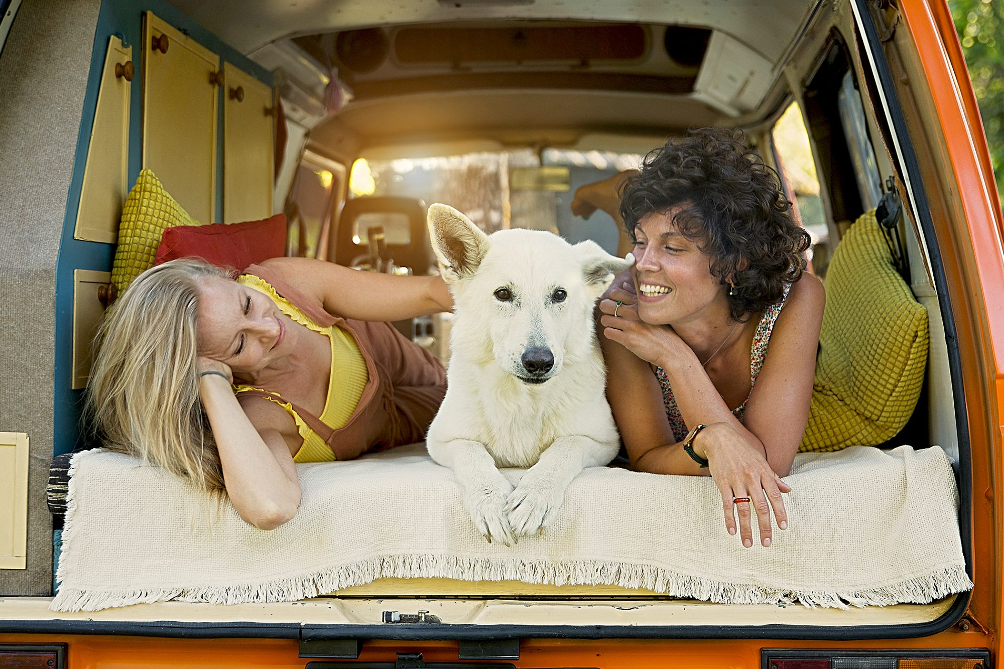 A dog in the back of a travel van with two women
