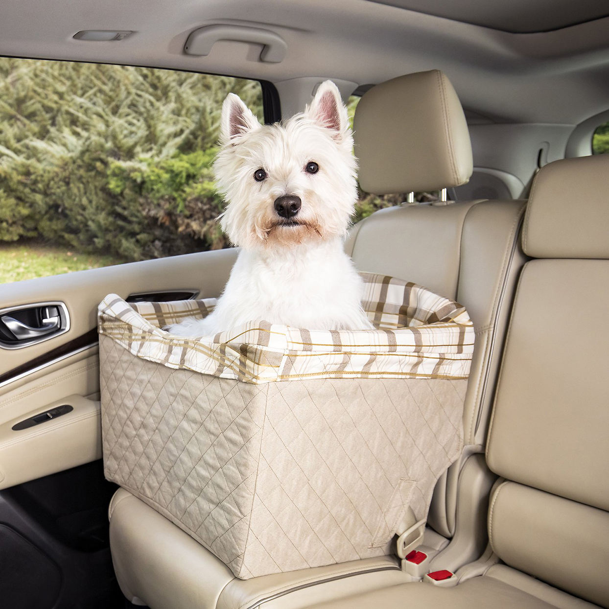 Dog sitting in a PetSafe Happy Ride car booster