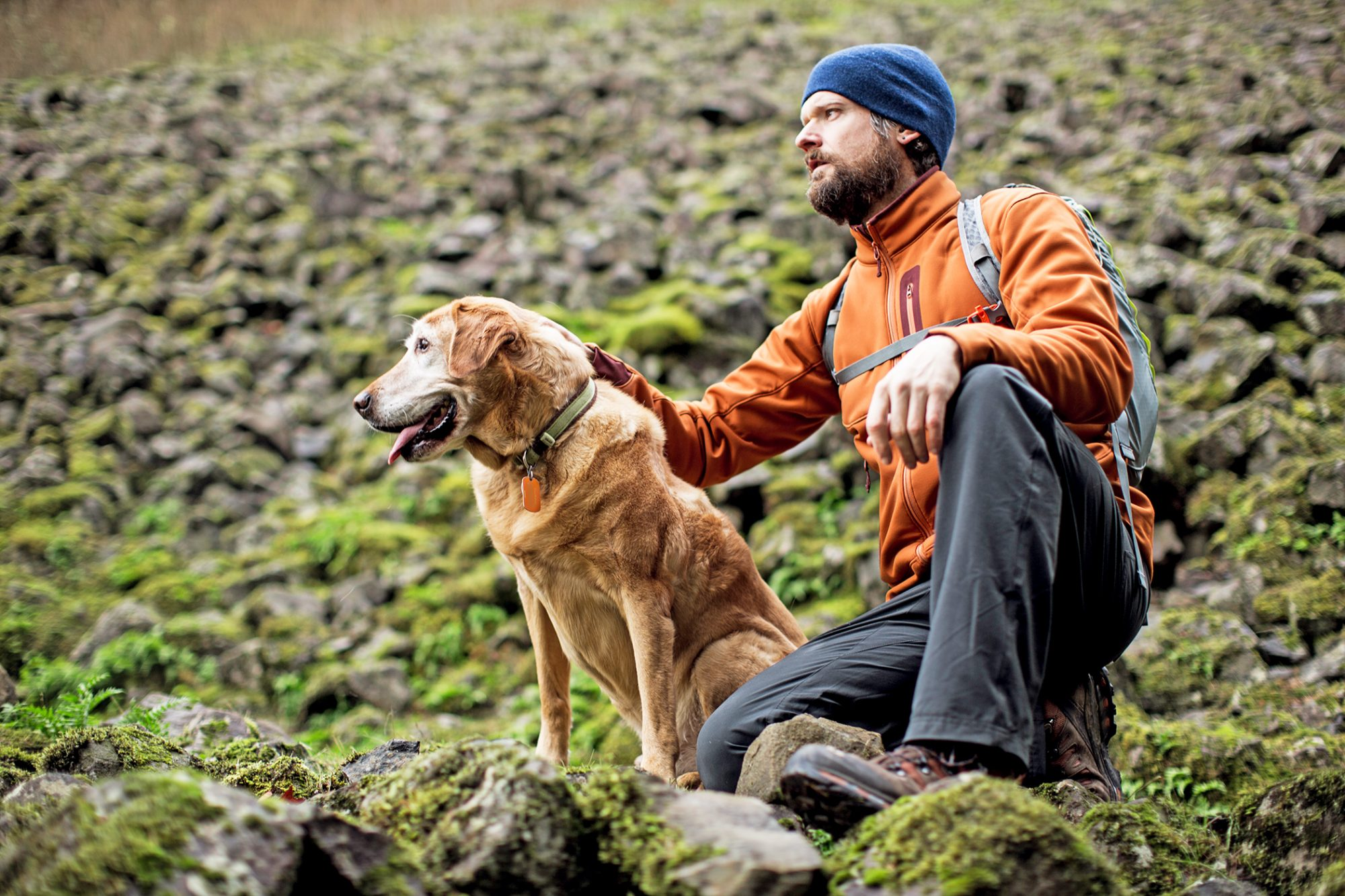 man petting his Labrador retriever on a hike on a rocky hill