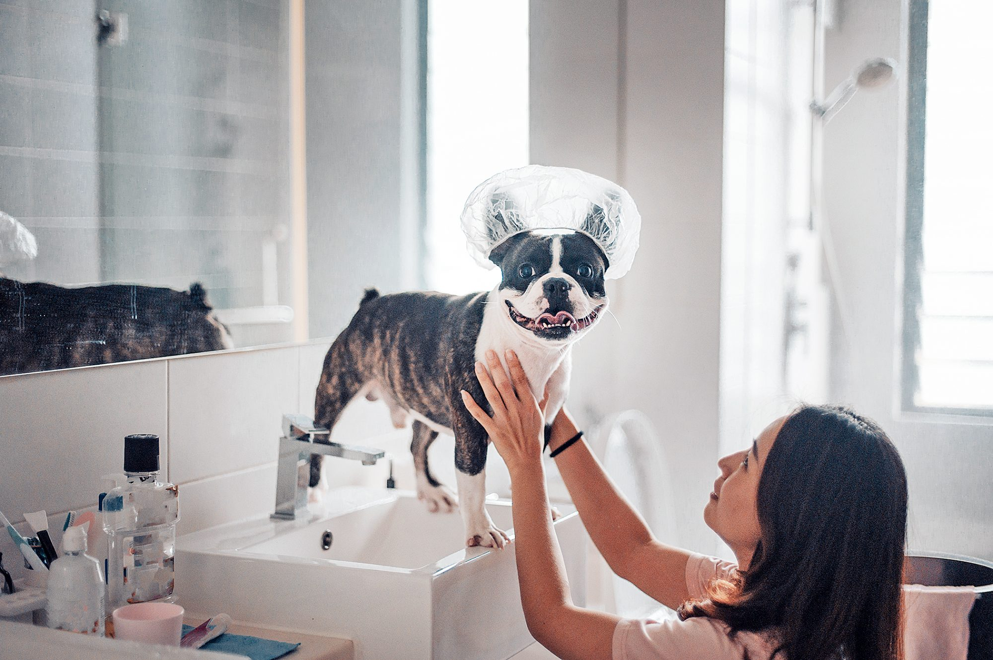 pampered dog living his best life wearing shower cap, getting ready for his bath