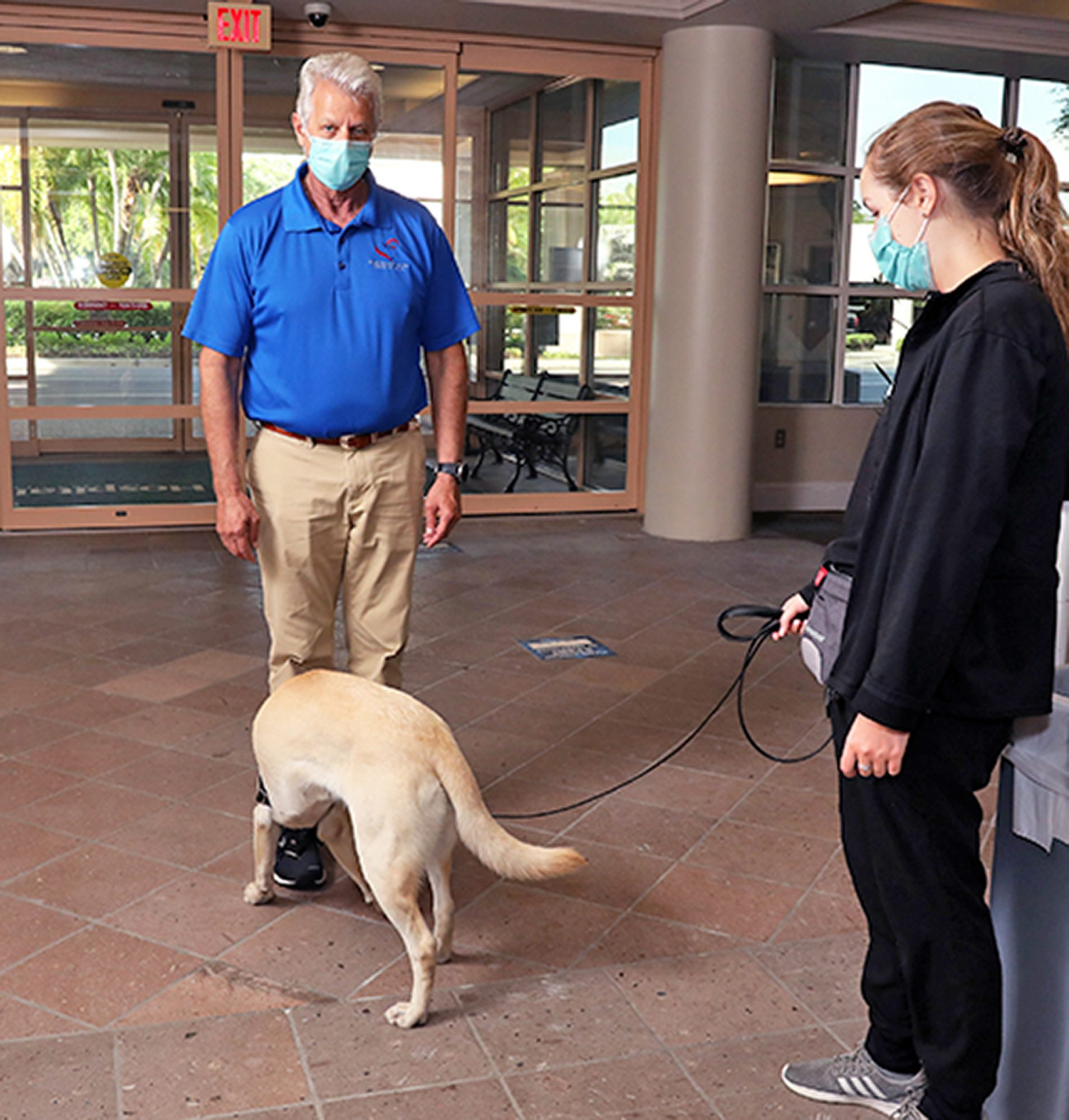 service dog Buffy sniffing man for covid at a hospital
