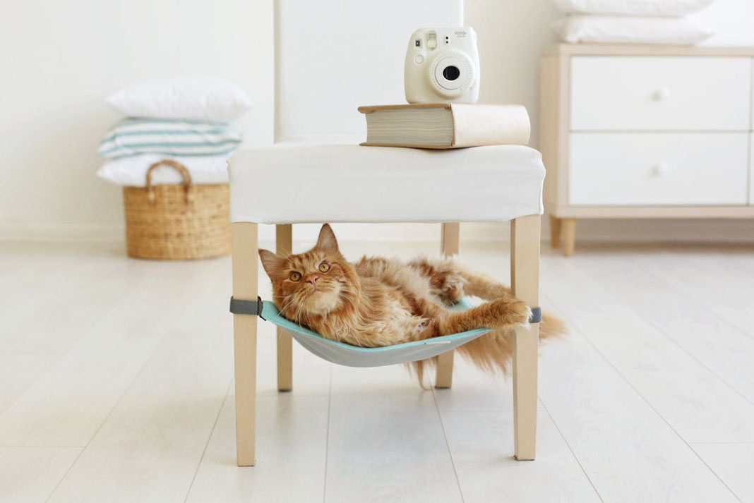 cat laying in cat hammock attached to a chair