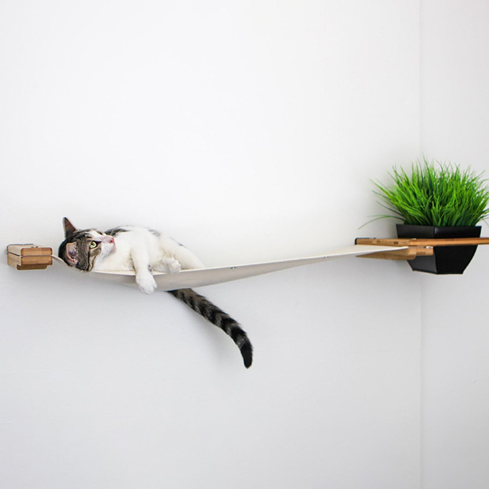 Cat lying in a CatastrophiCreations Cat Shelf Hammock attached to wall