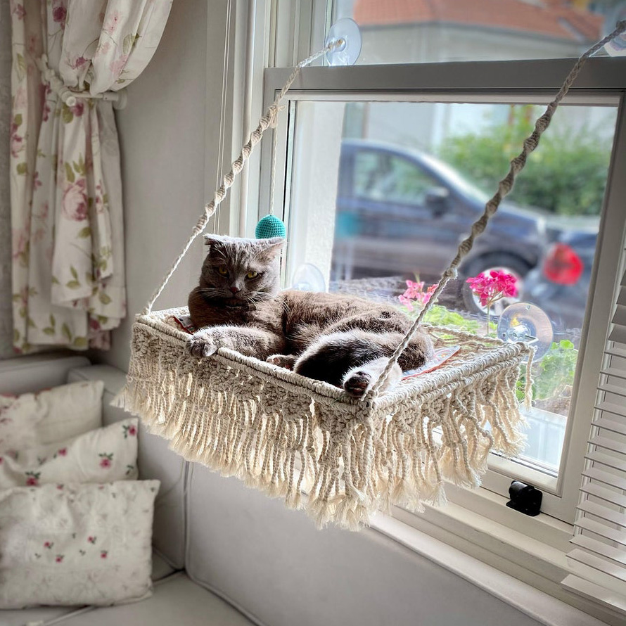 Cat lying on a Macrame Window Mounted Cat Bed attached to a window