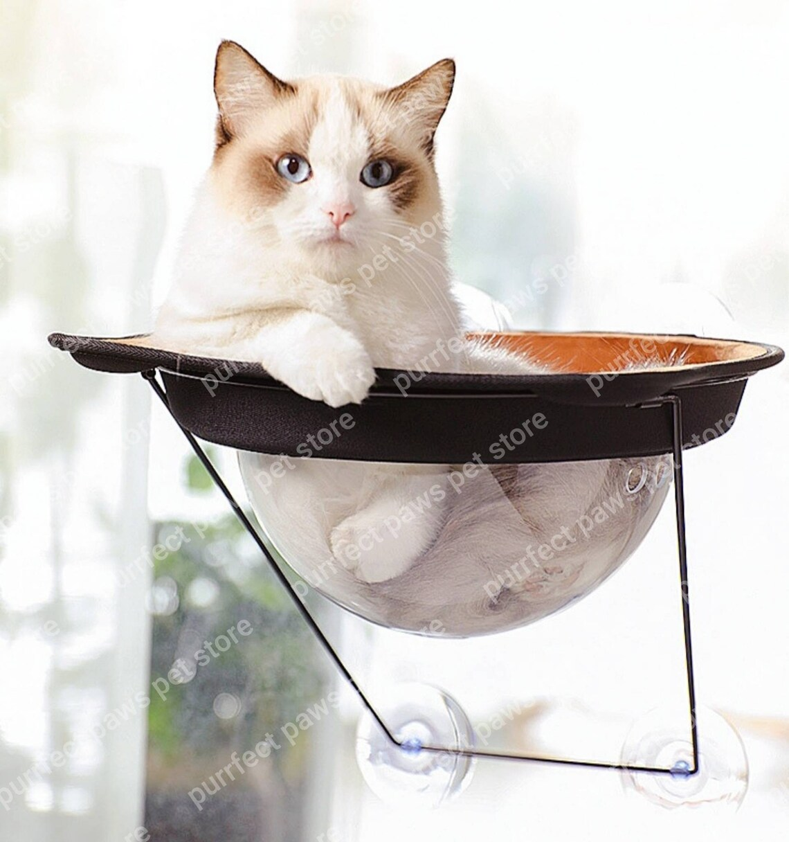 window pet perch for cats