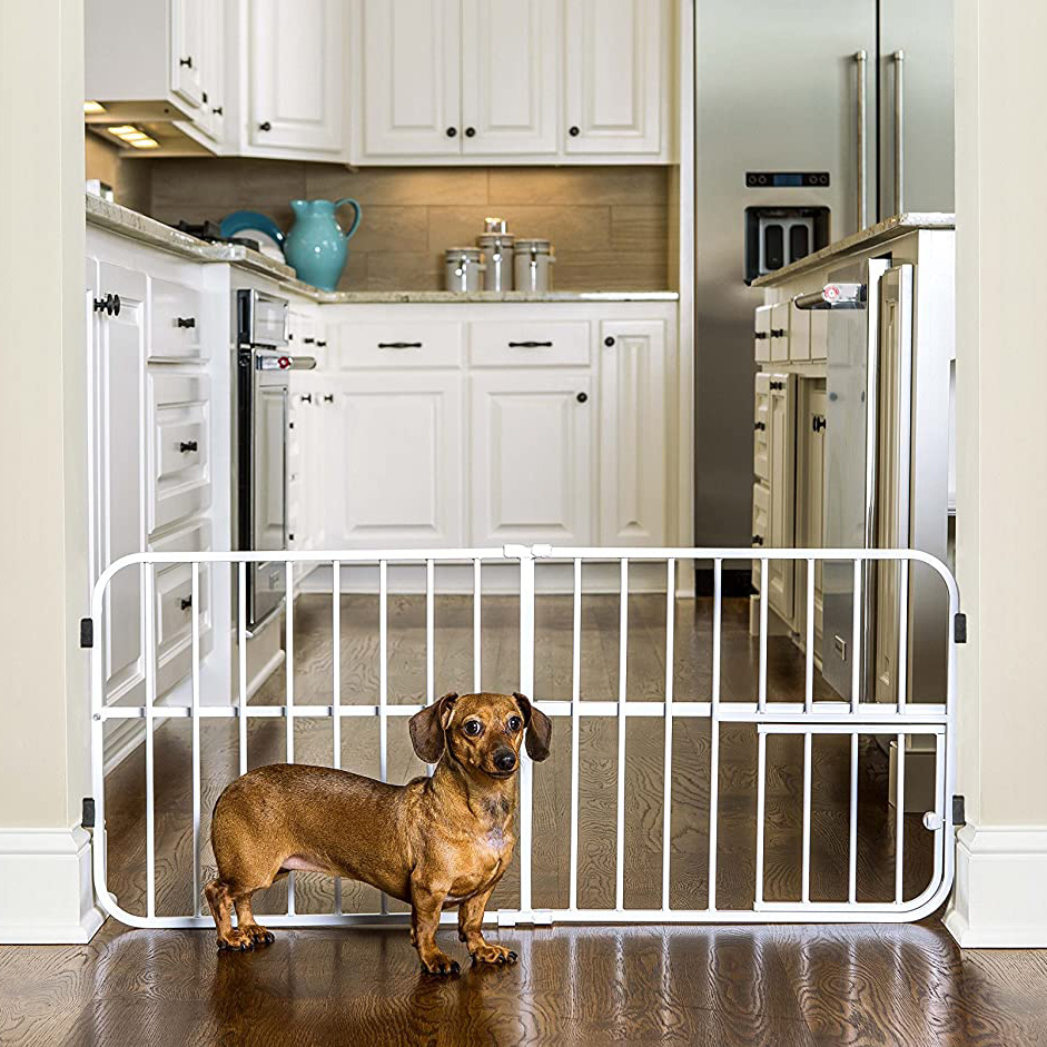 Dog standing in front of a Carlson Lil Tuffy Metal Expandable Gate White