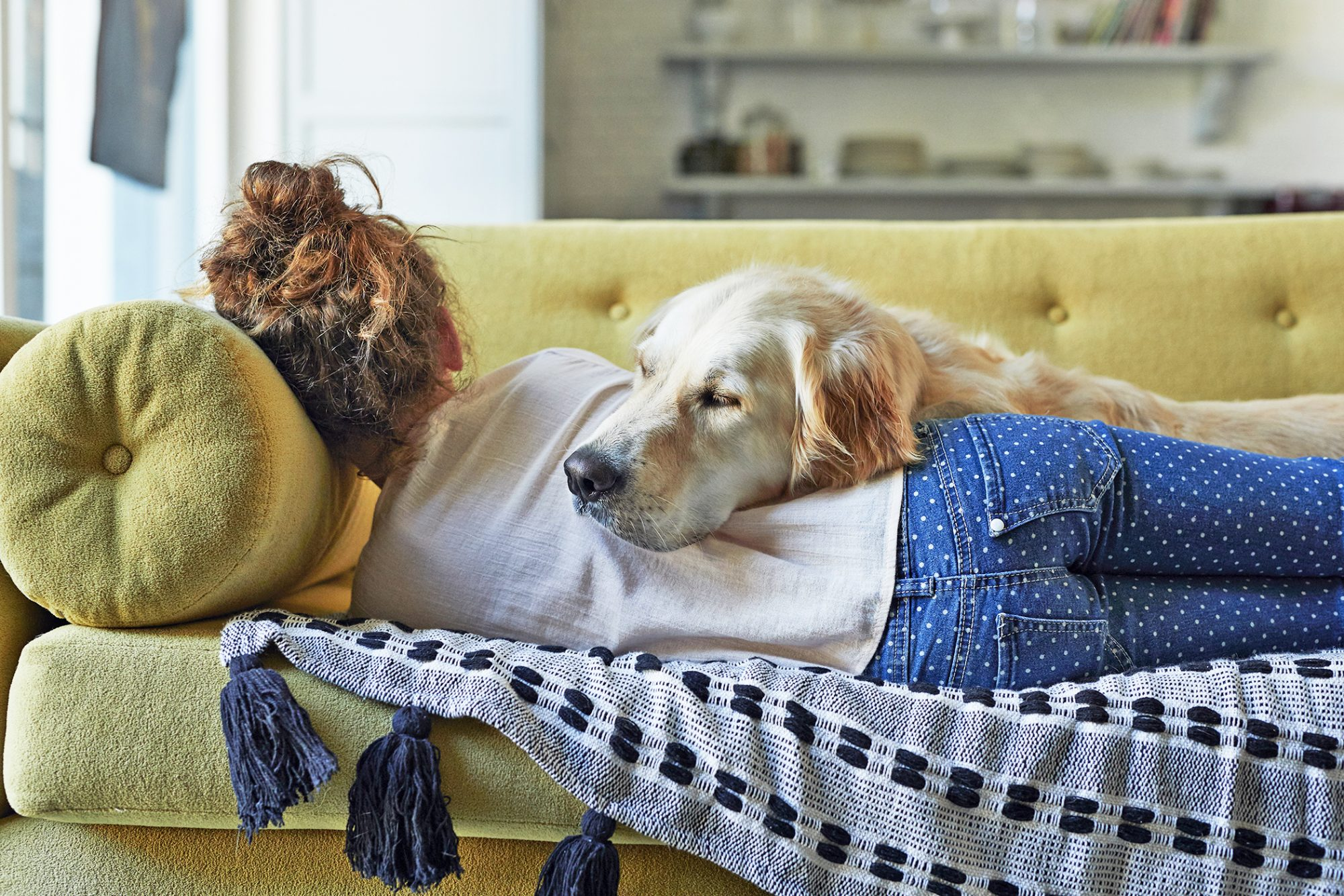 young girl sleeping on a yellow couch with her Golden Retriever resting his head on her back