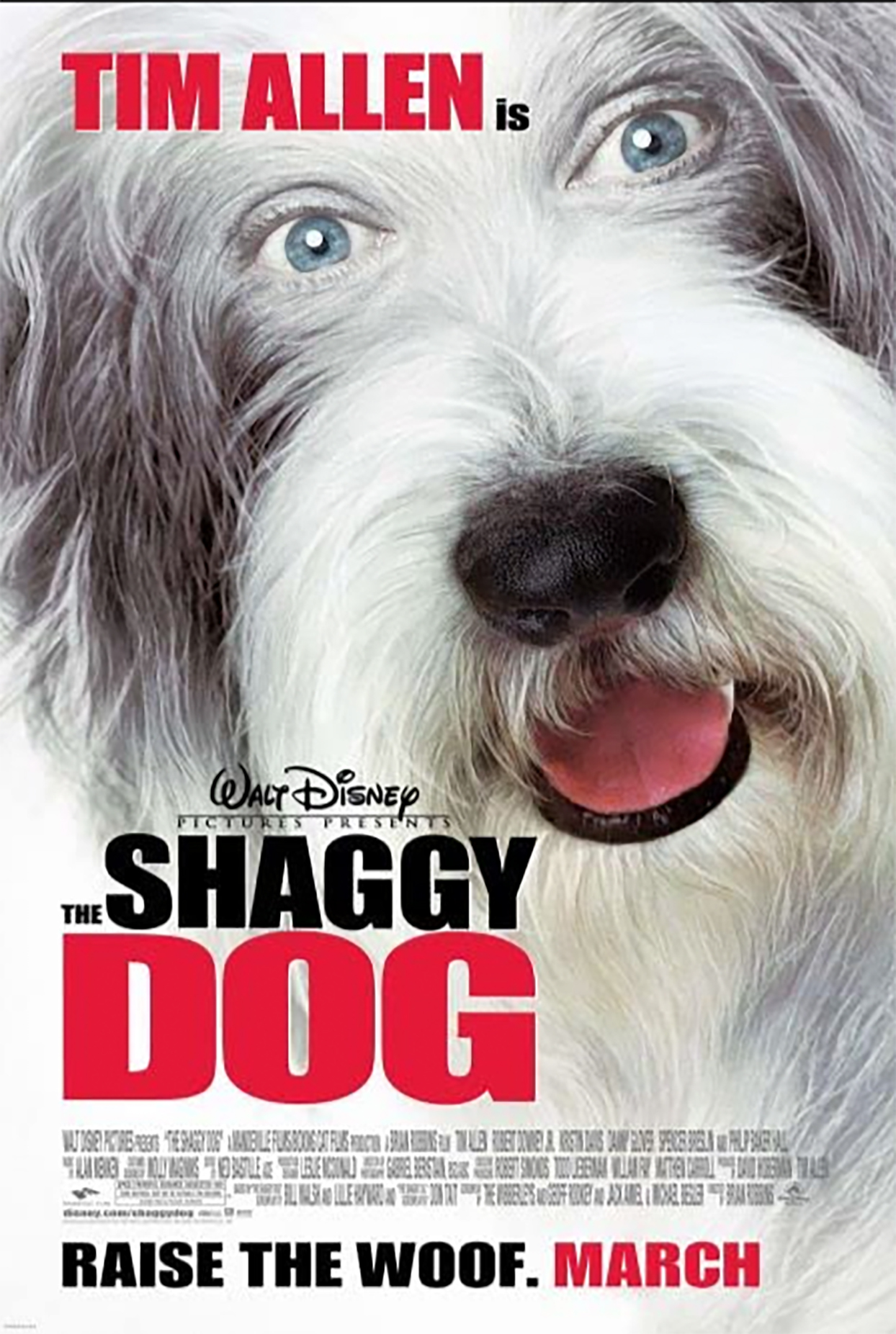 the shaggy dog movie poster with a bearded collie