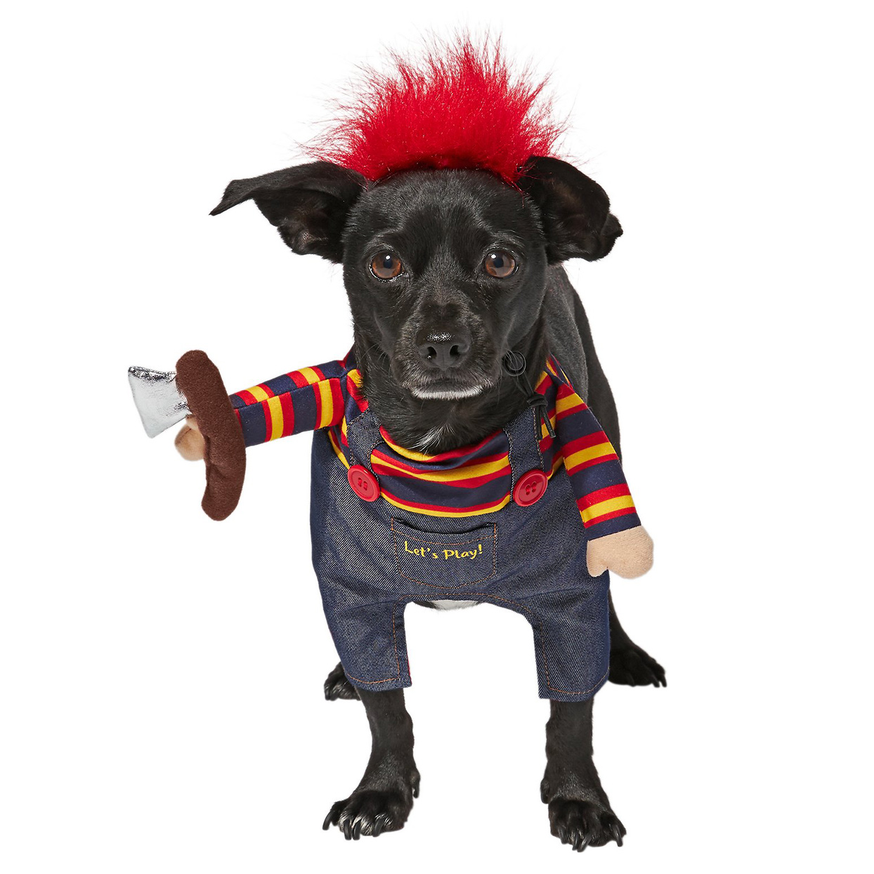 """Dog wearing the Front Walking """"Killer Doll"""" Dog & Cat Costume on a white background"""