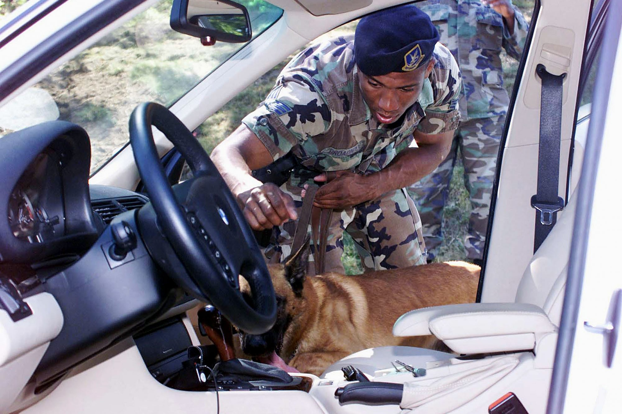 A man in fatigues uses a dog to search a car on 9/11